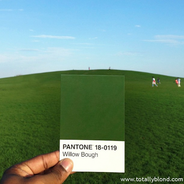 Pantone-Everyday-Life-by-Paul-Octavious-3-600x600