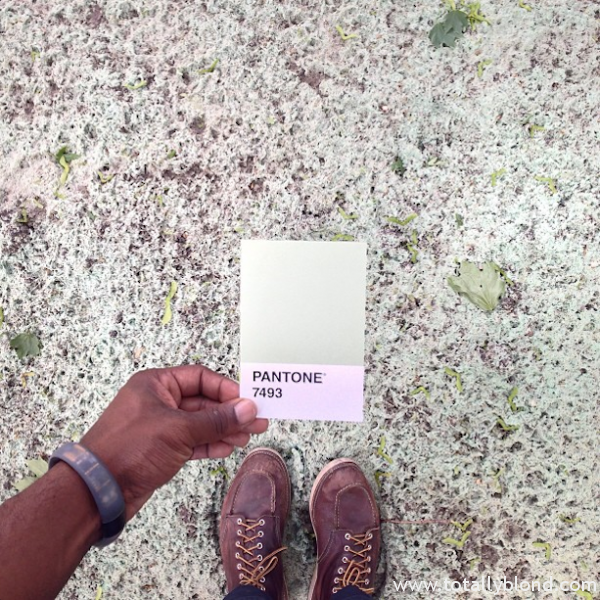 Pantone-Everyday-Life-by-Paul-Octavious-6-600x600